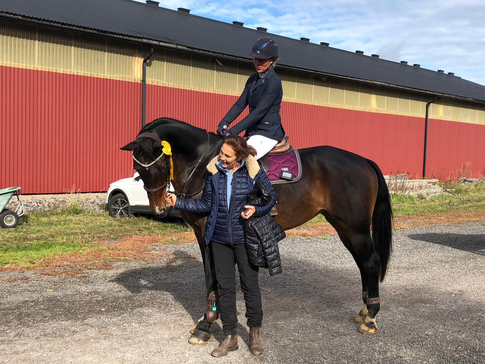 Din mentala träning ger dig direktkontakt med din häst!